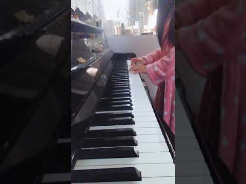organ-pyano-foto-vdeo