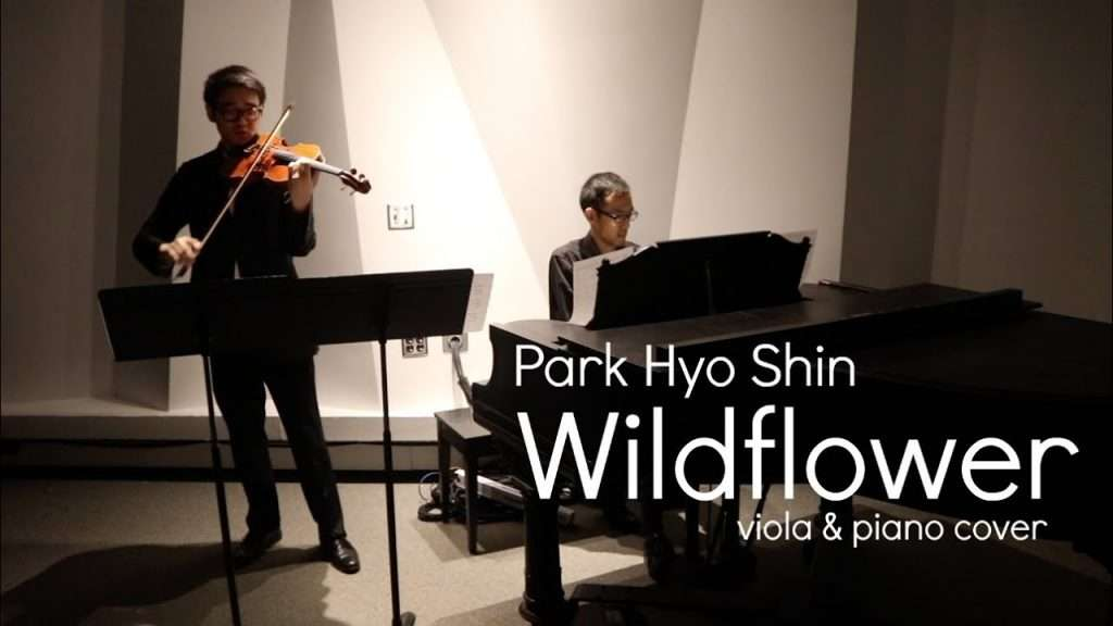 Park Hyo Shin 'Wildflower' Viola and Piano Cover Видео